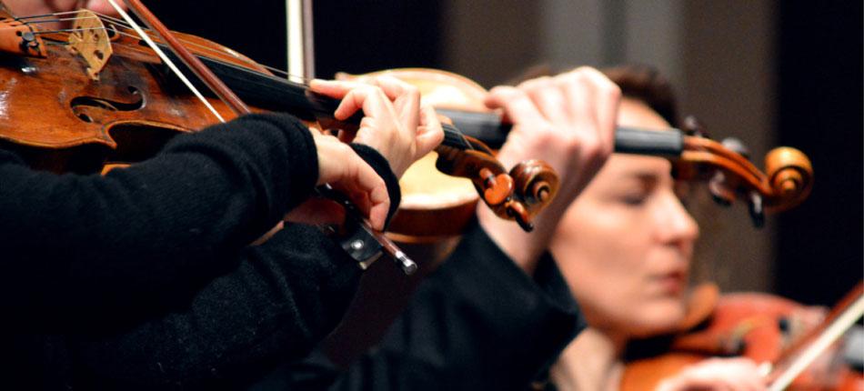 sdso-violin_web